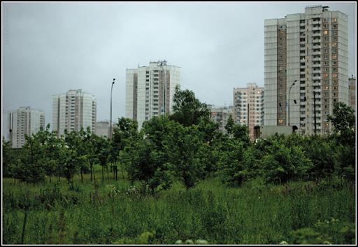 Группы высотных зданий проспекта