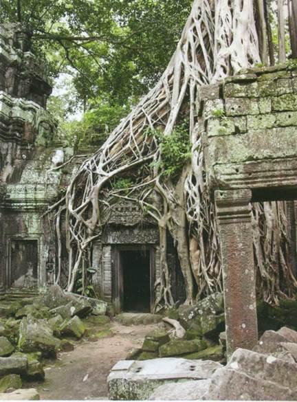Руины Юго-Восточной Азии выглядят более естественно, представляя собой органичное единство с наступающей природой